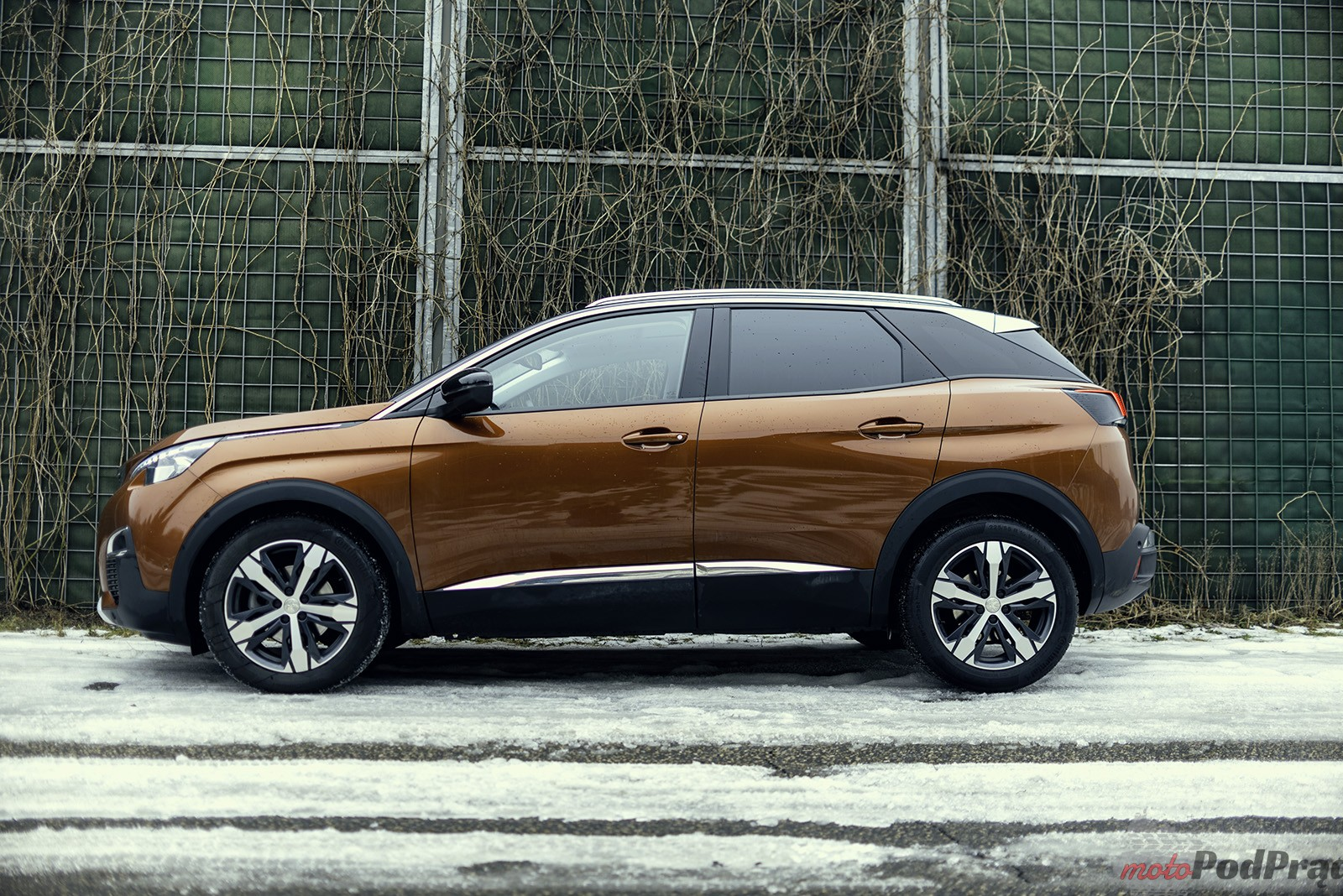 Peugeot 3008 10 Test: Peugeot 3008 1.6 THP   wirtualny lew