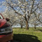 polo6 150x150 Test: Volkswagen Polo 1.0 TSI   lubię pomarańcze
