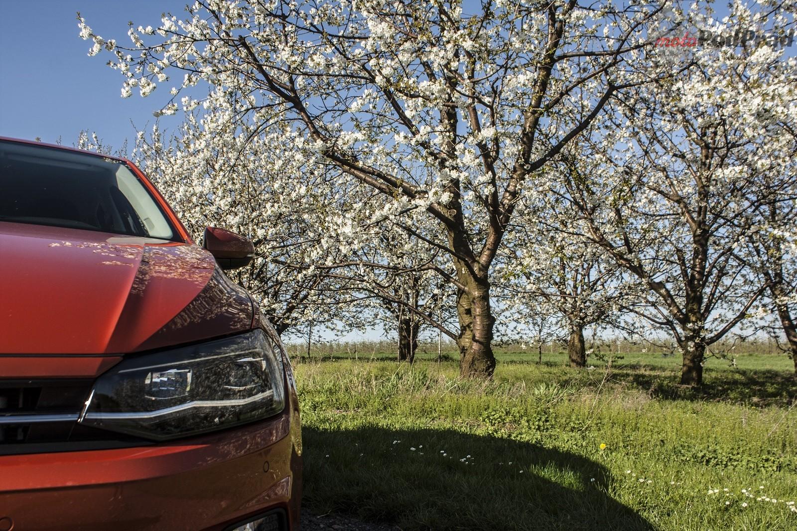 polo6 Test: Volkswagen Polo 1.0 TSI   lubię pomarańcze