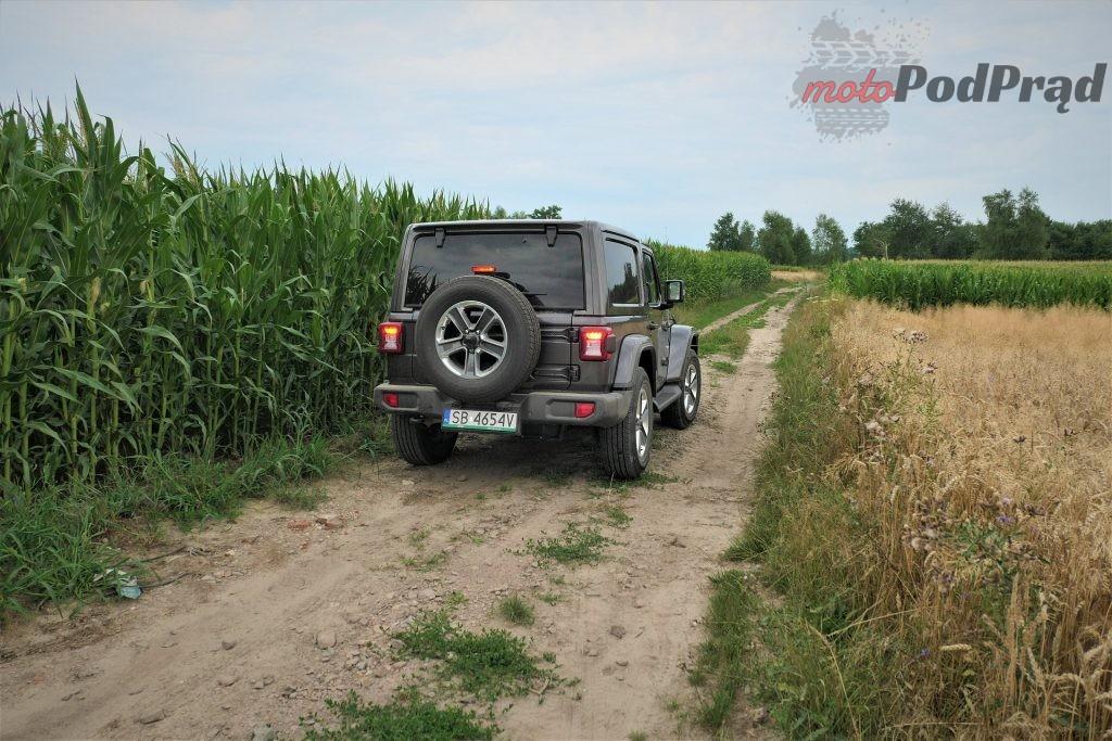 Jeep Wrangler 25 1024x683 Test: Jeep Wrangler Sahara   piasku po dziurki w nosie