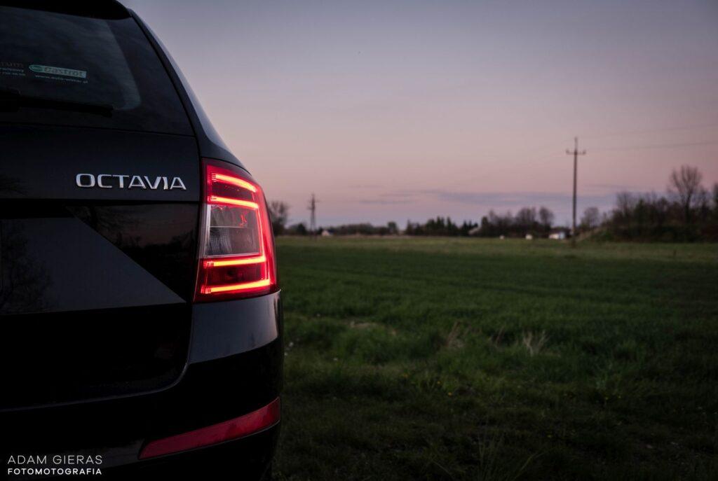 Octavia 4 1024x687